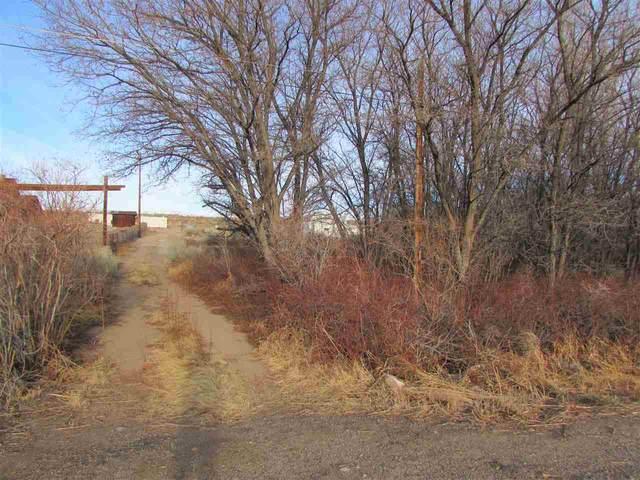 250 Mill Creek Rd, Bishop, CA 93546 (MLS #200165) :: Mammoth Realty Group