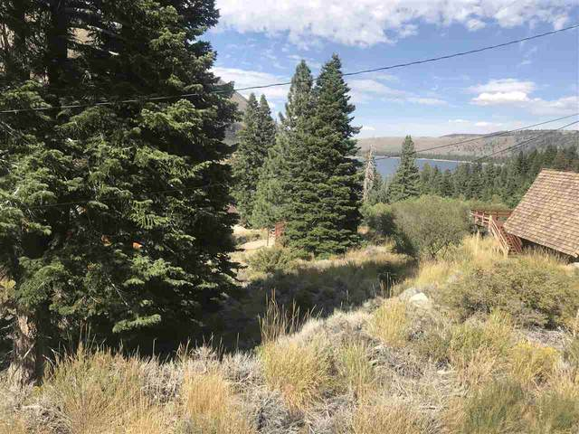 Rickey Drive, Bridgeport, CA 93517 (MLS #200209) :: Millman Team