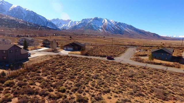 250 Sierra Springs Dr, Crowley Lake, CA 93546 (MLS #200226) :: Millman Team