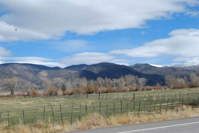 Us Hwy 395, Coleville, CA 96107 (MLS #200233) :: Mammoth Realty Group