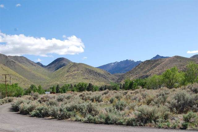 Mill Creek Meadow Drive, Corner Lot Drive, Coleville, CA 96107 (MLS #200271) :: Mammoth Realty Group