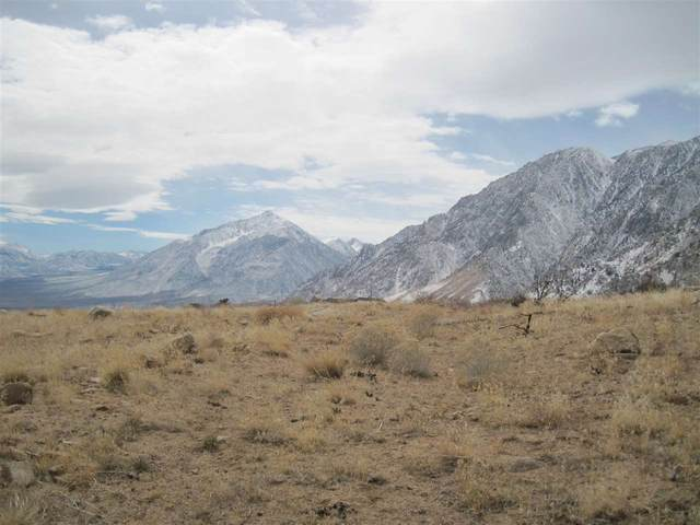 Lot 2 Ridgeview Dr, Swall Meadows, CA 93514 (MLS #200279) :: Mammoth Realty Group
