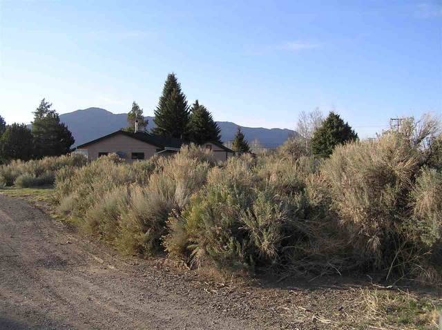 Lot 9 Cameron Drive, Bridgeport, CA 93517 (MLS #200302) :: Millman Team