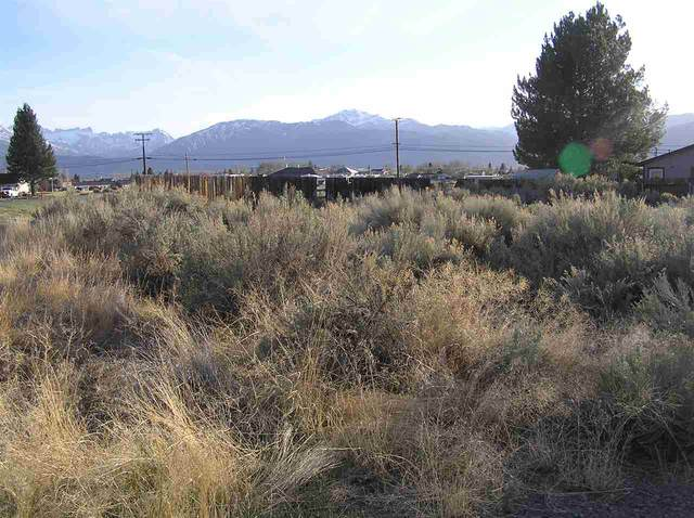 Commercial Lot Aurora Canyon, Bridgeport, CA 93517 (MLS #200304) :: Mammoth Realty Group
