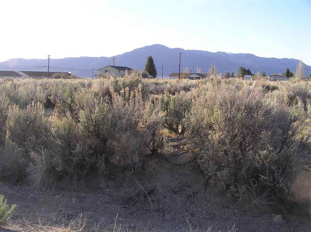 Commercial Lot Summer's Meadow, Bridgeport, CA 93517 (MLS #200305) :: Mammoth Realty Group