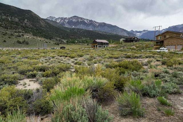 15 Hidden Canyon Ct, Crowley Lake, CA 93546 (MLS #200409) :: Mammoth Realty Group
