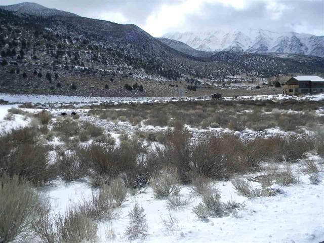 95 Hidden Canyon Ct, Crowley Lake, CA 93546 (MLS #200411) :: Mammoth Realty Group