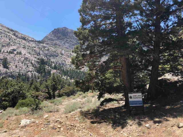 SLP Tract 5 Wyoming Street, June Lake, CA 93529 (MLS #200476) :: Mammoth Realty Group