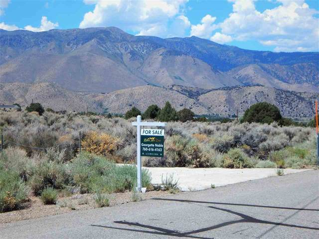 480 Camp Antelope Rd., Coleville, CA 96107 (MLS #200604) :: Mammoth Realty Group