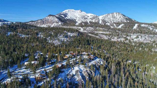 325 Pine Street, Mammoth Lakes, CA 93546 (MLS #200765) :: Mammoth Realty Group