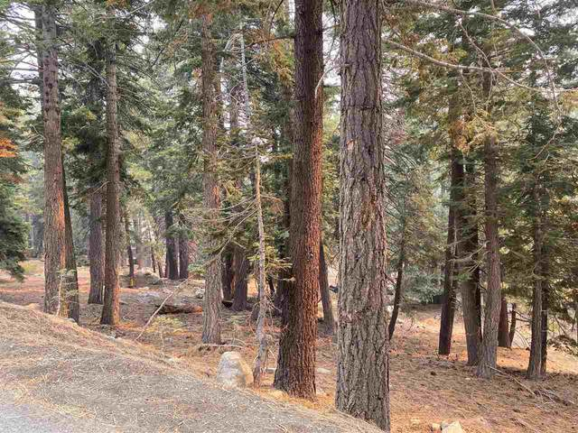 33 Hidden Valley Rd., Mammoth Lakes, CA 93546 (MLS #200843) :: Millman Team