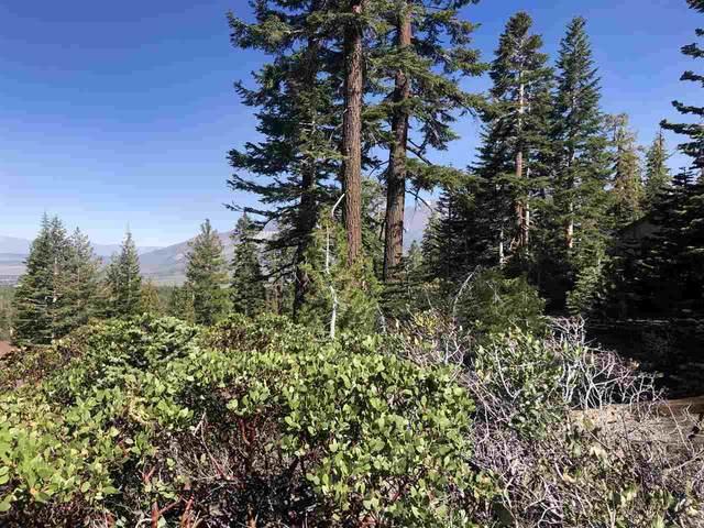 317 John Muir Road, Mammoth Lakes, CA 93546 (MLS #200936) :: Mammoth Realty Group