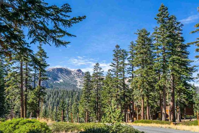 300 Le Verne Street, Mammoth Lakes, CA 93546 (MLS #200949) :: Mammoth Realty Group