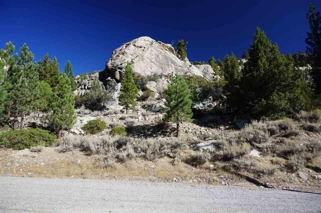 Lot 15 W Steelhead, June Lake, CA 93529 (MLS #210017) :: Mammoth Realty Group