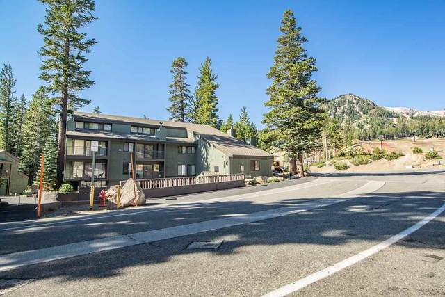 895 Canyon Blvd #11, Mammoth Lakes, CA 93546 (MLS #210139) :: Mammoth Realty Group