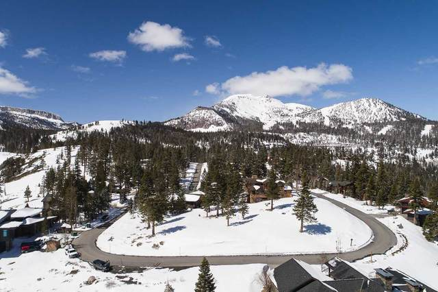 480 Fir Street, Mammoth Lakes, CA 93546 (MLS #210262) :: Mammoth Realty Group