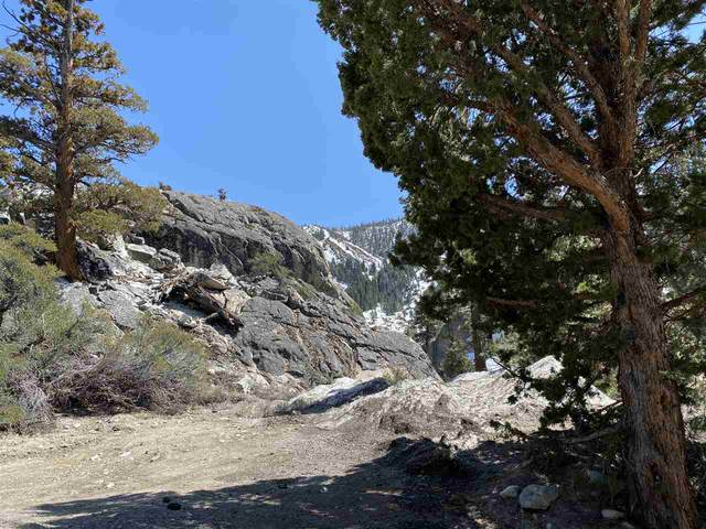 00 Texas Street, June Lake, CA 93529 (MLS #210303) :: Mammoth Realty Group
