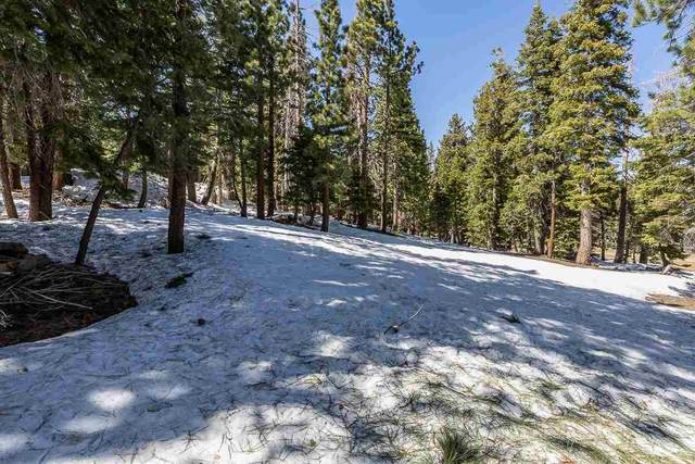2020 Lodestar Drive Lot #9, Mammoth Lakes, CA 93546 (MLS #210311) :: Mammoth Realty Group