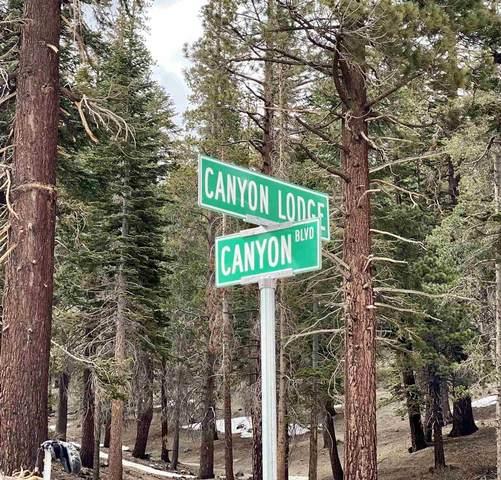 895 Canyon Boulevard, Mammoth Lakes, CA 93546 (MLS #210348) :: Mammoth Realty Group