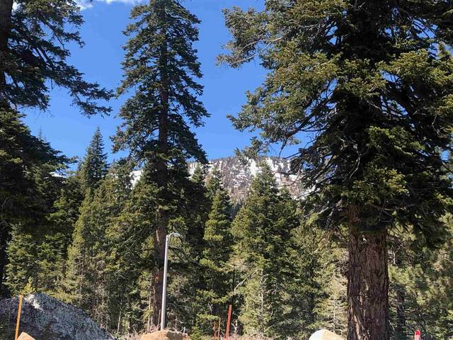 224 Red Fir Road, Mammoth Lakes, CA 93546 (MLS #210353) :: Mammoth Realty Group