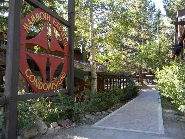 221 Canyon Boulevard, Mammoth Lakes, CA 93546 (MLS #210360) :: Mammoth Realty Group
