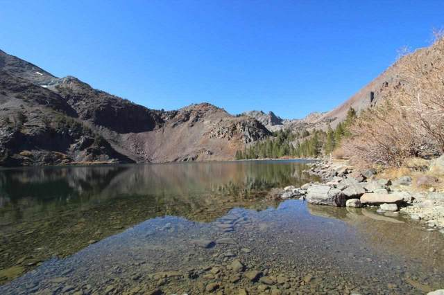 Lot 21 Summit Drive, Virginia Lakes, CA 93541 (MLS #210366) :: Mammoth Realty Group