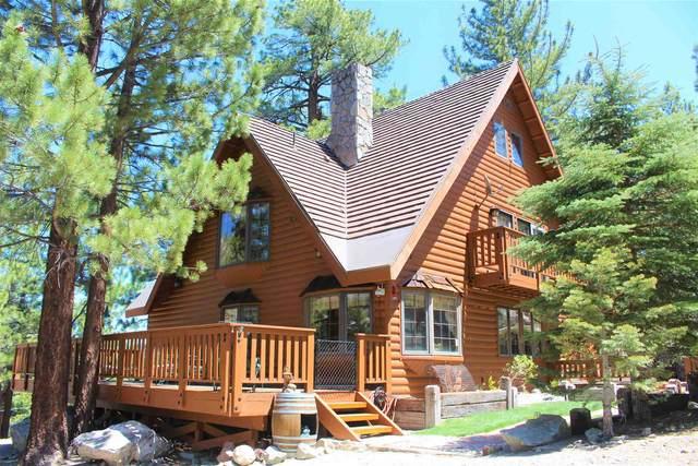 703 Mono Drive, June Lake, CA 93529 (MLS #210425) :: Millman Team