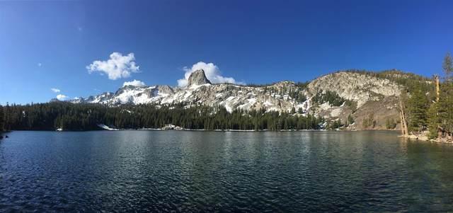 1500 Lake George Boat Access Cabin 6, Mammoth Lakes, CA 93546 (MLS #210432) :: Millman Team