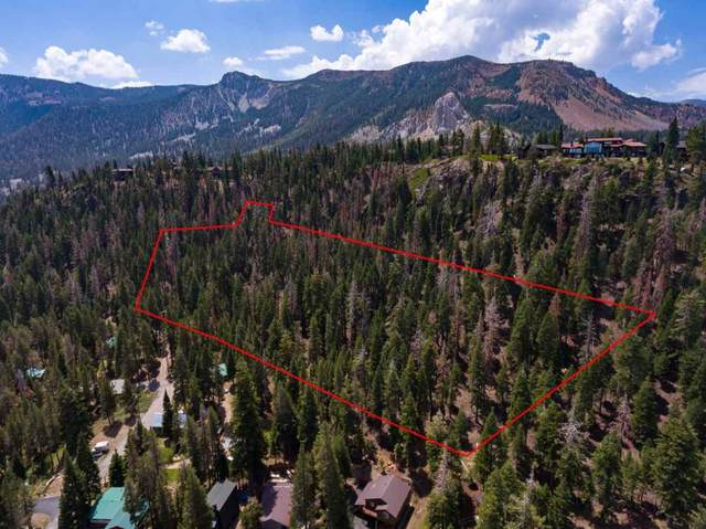 Lost Lane, Mammoth Lakes, CA 93546 (MLS #210450) :: Mammoth Realty Group