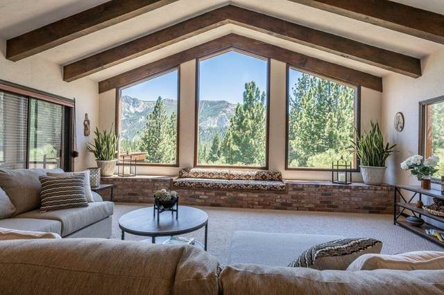 226 Valley Vista Drive, Mammoth Lakes, CA 93546 (MLS #210599) :: Mammoth Realty Group