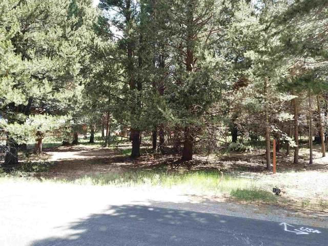 lot 17 Dream Mountain Drive, June Lake, CA 93529 (MLS #210641) :: Mammoth Realty Group