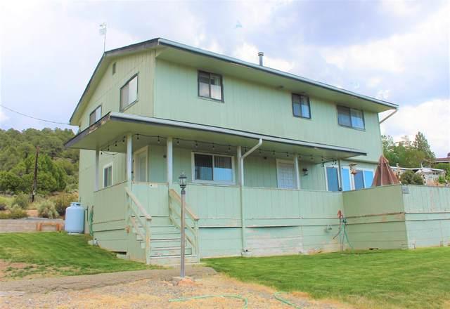 110 Rickey Peak Road, Bridgeport, CA 93517 (MLS #210646) :: Mammoth Realty Group