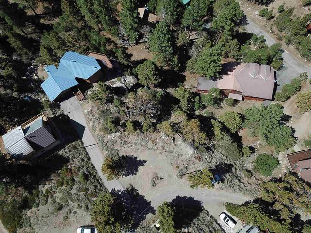 00 Rea Drive, June Lake, CA 93529 (MLS #210662) :: Millman Team