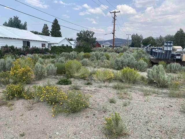 34 Kirkwood St, Bridgeport, CA 93517 (MLS #210716) :: Mammoth Realty Group