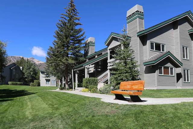631 Golden Creek, Mammoth Lakes, CA 93546 (MLS #210812) :: Mammoth Realty Group