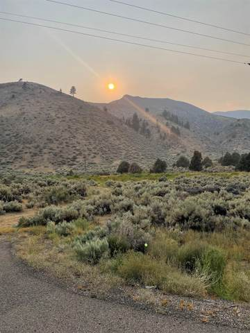 040 Us Highway 395, Coleville, CA 96107 (MLS #210881) :: Mammoth Realty Group