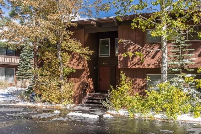 221 Canyon Boulevard #225, Mammoth Lakes, CA 93546 (MLS #210882) :: Mammoth Realty Group