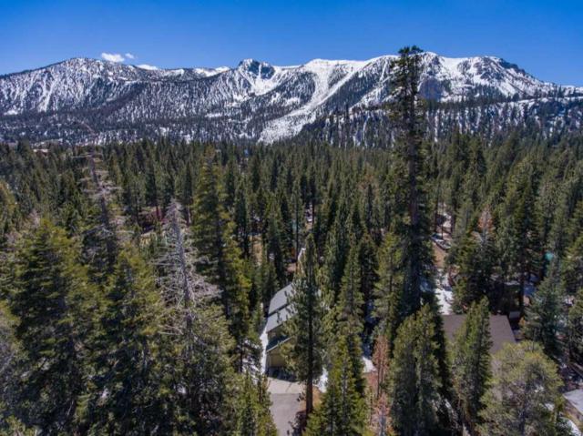 79 Alexander Ln, Mammoth Lakes, CA 93546 (MLS #180268) :: Rebecca Garrett with Mammoth Realty Group