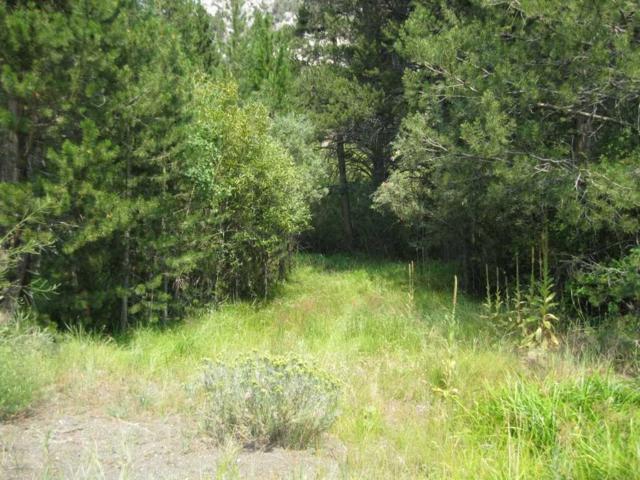Lot 6 Hwy 158, June Lake, CA 93529 (MLS #180648) :: Rebecca Garrett - Mammoth Realty Group