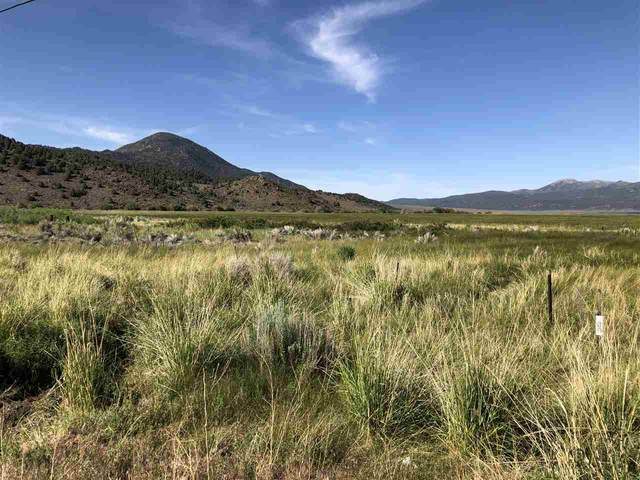 Lot  3 Highway 395, Bridgeport, CA 93517 (MLS #180725) :: Millman Team