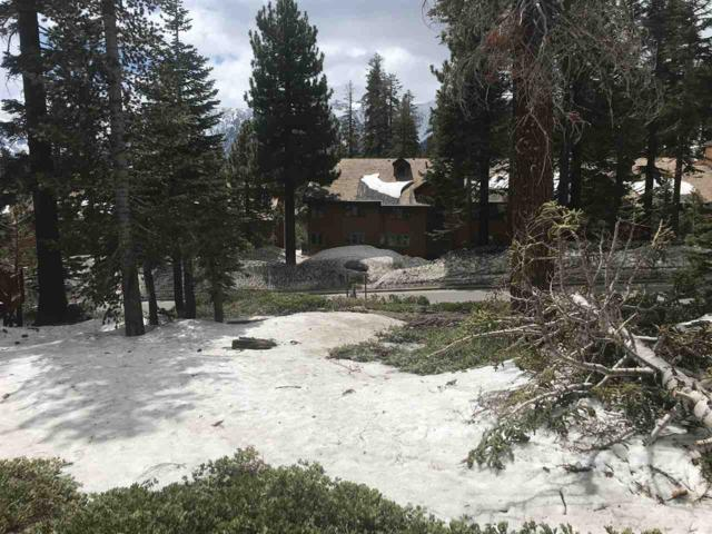 770 Lakeview Boulevard, Mammoth  Lakes, CA 93546 (MLS #190144) :: Mammoth Realty Group