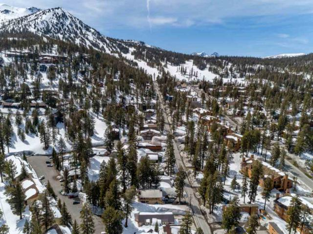 85 Davison Road #2, Mammoth Lakes, CA 93546 (MLS #190160) :: Mammoth Realty Group