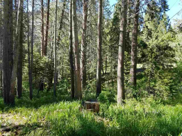 0 Minaret Road, June Lake, CA 93529 (MLS #190182) :: Mammoth Realty Group