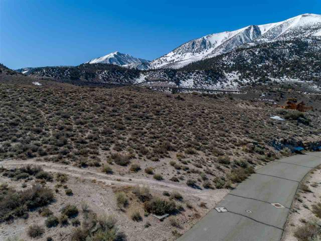 82 Lakeridge Trl, Crowley Lake, CA 93546 (MLS #190258) :: Mammoth Realty Group