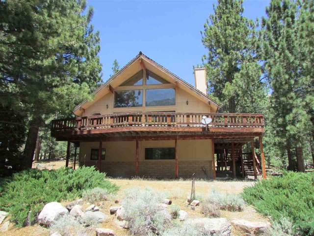 125 Charley Day Dr, Bridgeport, CA 93517 (MLS #190850) :: Mammoth Realty Group