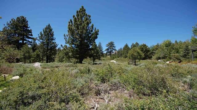 22 Hub Circle, Mammoth Lakes, CA 93546 (MLS #200077) :: Mammoth Realty Group