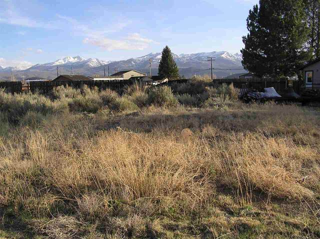 Lot 8 Cameron Drive, Bridgeport, CA 93517 (MLS #200303) :: Mammoth Realty Group