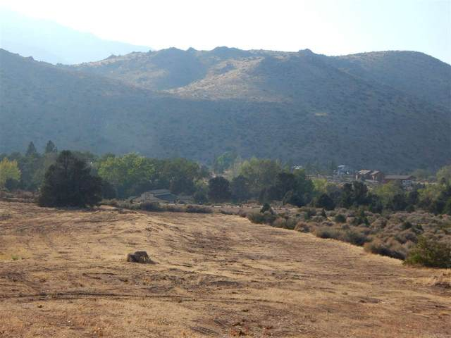 View Lot Dry Canyon Road, Coleville, CA 96107 (MLS #200691) :: Mammoth Realty Group
