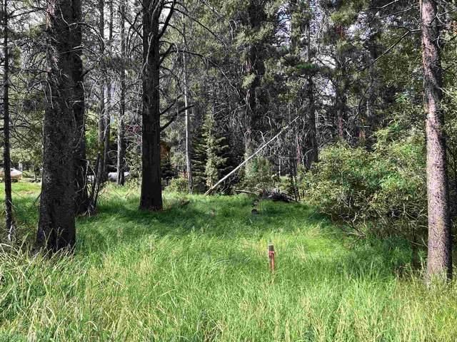 Lot 6 Hwy 158, June Lake, CA 93529 (MLS #210325) :: Mammoth Realty Group