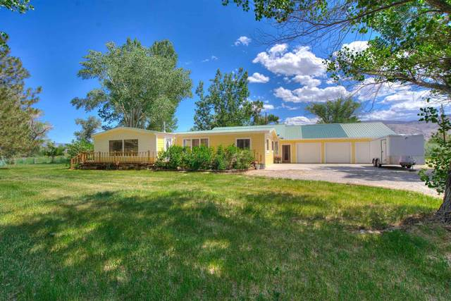 109132 Us Highway 395, Coleville, CA 96107 (MLS #210559) :: Mammoth Realty Group